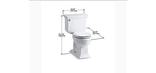 Toilet for Elderly
