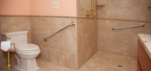 Toilet Grab Bar for the Elderly